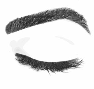 eyebrowwax1